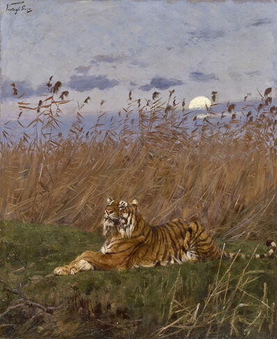 Géza Vastagh, 'A TIGER AMONG RUSHES IN THE MOONLIGHT'