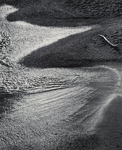 John Sexton, 'Surf and Driftwood, Afternoon, Point Lobos, California', 1978