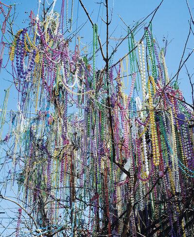 Charlotte Krieger, 'Carnival Trees #1', 2016