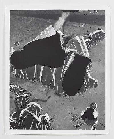 Eileen Quinlan, 'Passing Through', 2013