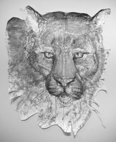 Jules Buck Jones, 'Mountain Lion (Puma concolor)', 2019