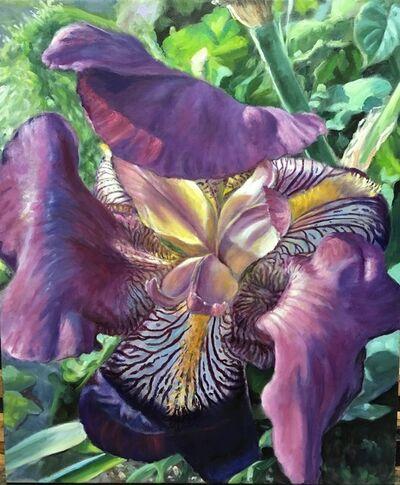 Judith Dickinson, 'Garden Light'
