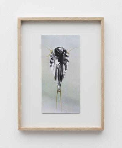 Eleonore False, 'Camouflage #8', 2019