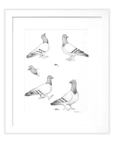 Todd Francis, 'B/W BOUTIQUE PIGEONS'