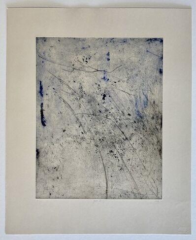 Chrisél Attewell, 'Garden Drawing VI', 2020