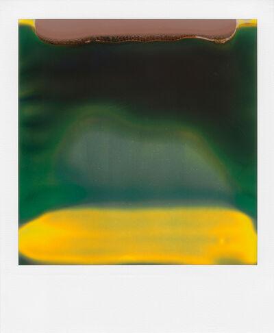 William Miller, 'Ruined Polaroid #40', 2011