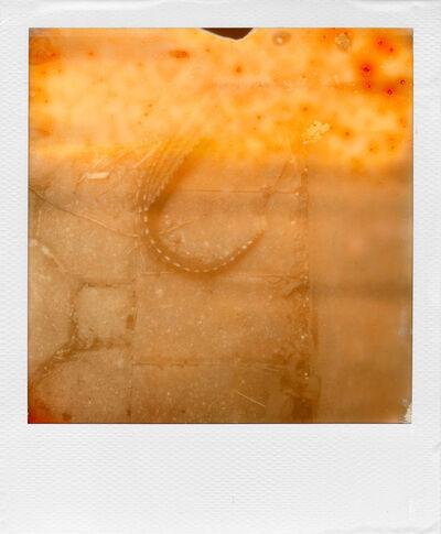 William Miller, 'Ruined Polaroid #18', 2011