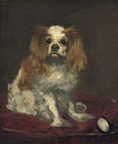Édouard Manet, 'A King Charles Spaniel ', ca. 1866