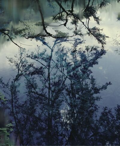 Sandra Kantanen, 'Untitled (Lake 5)', 2010