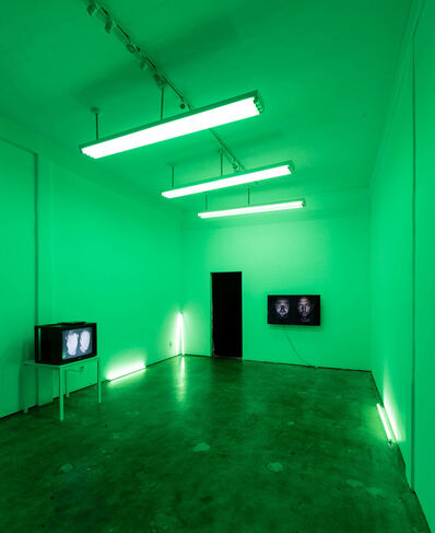 Heimo Zobernig, 'Untitled (in Green)', 2015