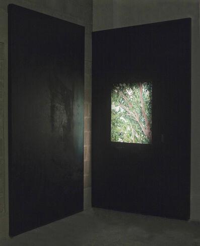 Lucía Delfino, 'Donde las cosas se acomulan', 2015