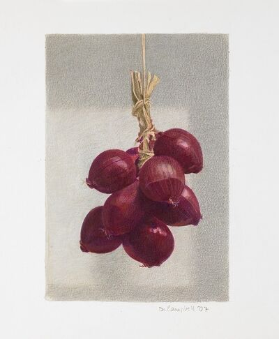 Donald Campbell, 'Red Onions'