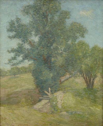Julian Alden Weir, 'Tree and Meadow, Connecticut ', 1900