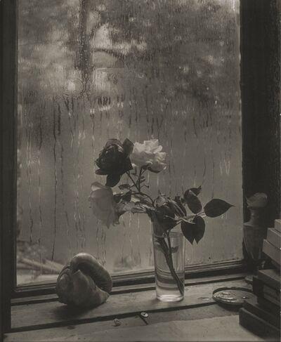 Josef Sudek, 'La Dernière Rose', 1959