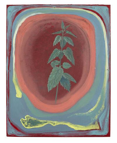 Lutz Braun, 'Brennnessel (Stinging Nettle)', not dated