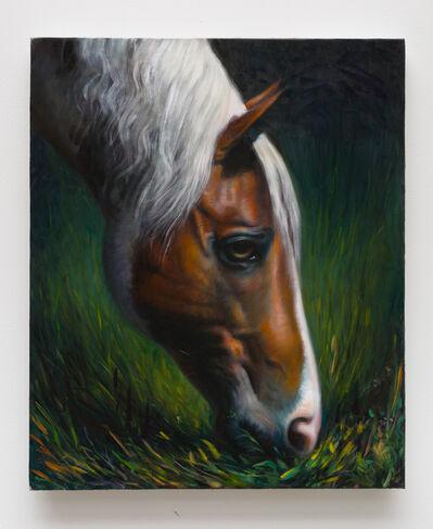 TM Davy, 'horse (xoxx)', 2016
