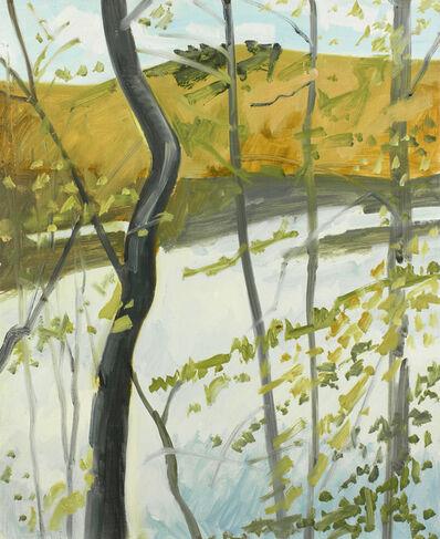 Lois Dodd, 'Pondside', 1980