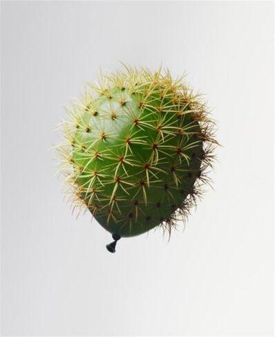 Nancy Fouts, 'Cactus Balloon', 2010