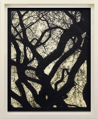 Doug & Mike Starn, 'Structure of Thought 18', 2001