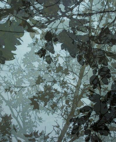 Cheng-Yen LIN, '映像‧印象-15 Reflection‧Impression-15',  2018