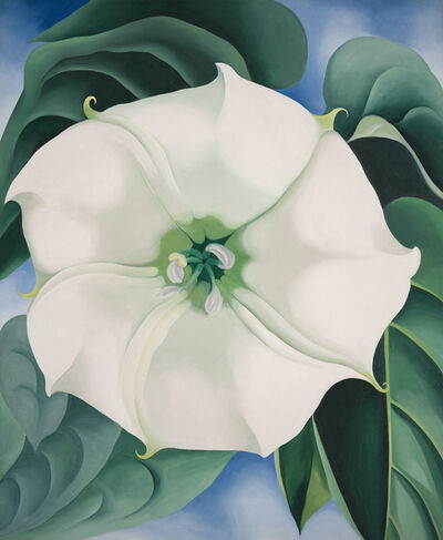 Georgia O'Keeffe, 'Jimson Weed/White Flower No. 1', 1932