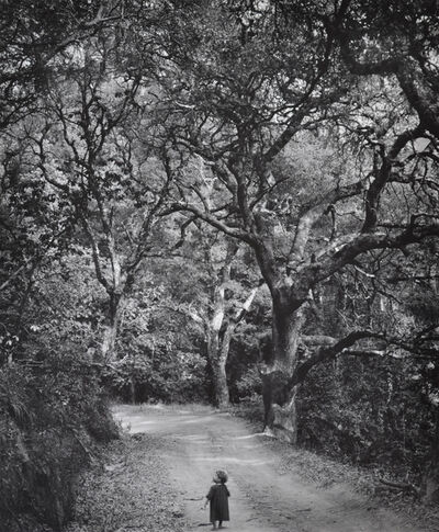 Wynn Bullock, 'Child on Forest Road', 1958