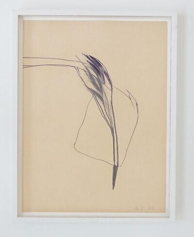 Marianne Eigenheer, 'Ohne Titel', 1977