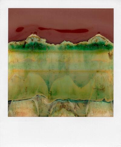 William Miller, 'Ruined Polaroid #19', 2011