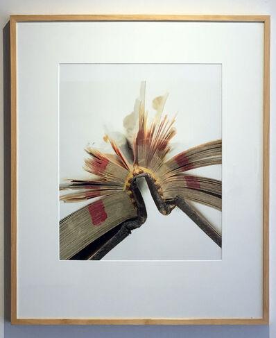 Mark Douglas, 'Book 28, Framed', 2008