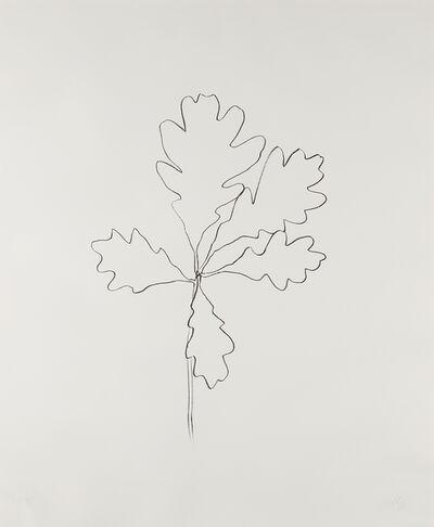 Ellsworth Kelly, 'Oak I, from Series of Oak Leaves', 1992