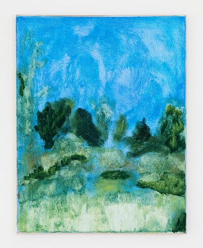 Frankie Gardiner, 'The Upper Field', 2020