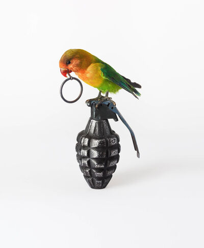 Nancy Fouts, 'Lovebird with Grenade', 2012