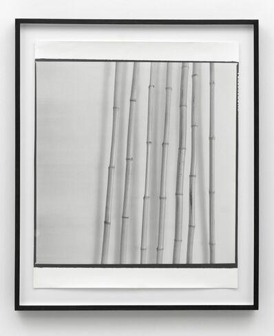 Sigmar Polke, 'Untitled (Bambus)', 1968 -1969/1990