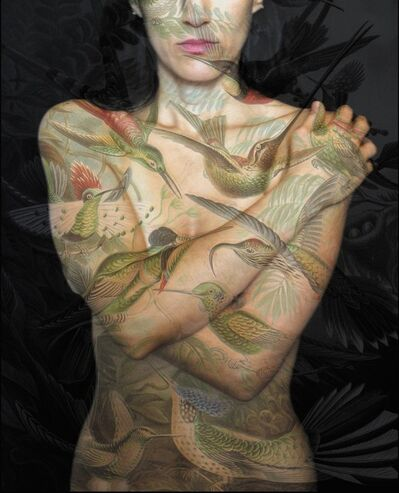 Tatiana Parcero, 'Universus #27', 2014