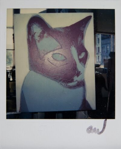 Andy Warhol, 'Andy Warhol, Cat Painting Detail at The Factory, Polaroid Photograph, 1976', 1976