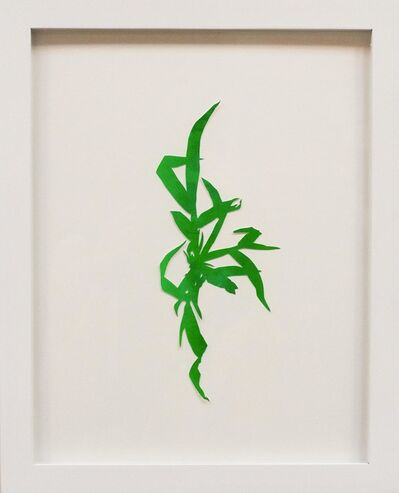 Hannah Cole, 'Crabgrass #7', 2018