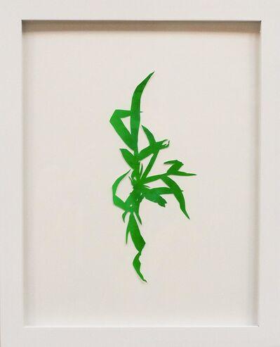 Hannah Cole, 'Crabgrass #7', 2018