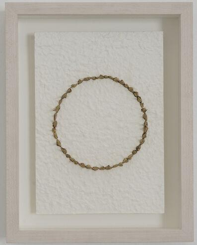 Xavi Muñoz, 'Landscape (domestic)', 2016