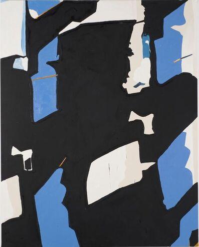 Koen van den Broek, 'Flock #1', 2013