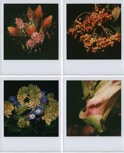 Nobuyoshi Araki, 'Flower(s)', 2006-2009