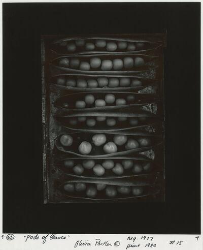 Olivia Parker, 'Pods of Chance', 1977