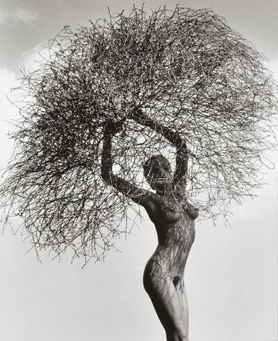 Herb Ritts, 'Neith with Tumbleweed', 1986