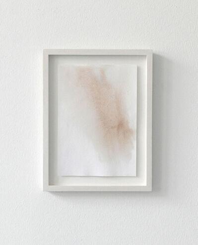 Jodie Carey, 'Untitled (Flower Study)', 2013