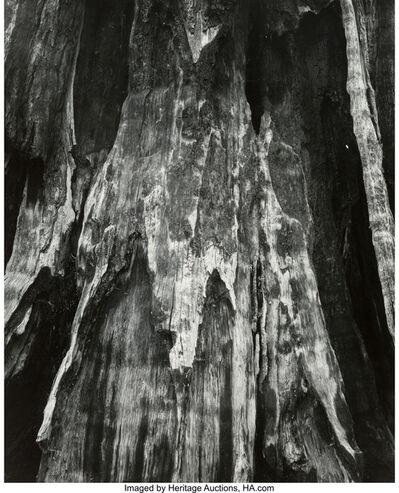 Michael A. Smith, 'Yosemite', 1988