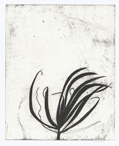 Nora Pauwels, 'Marie's Plant', 2018