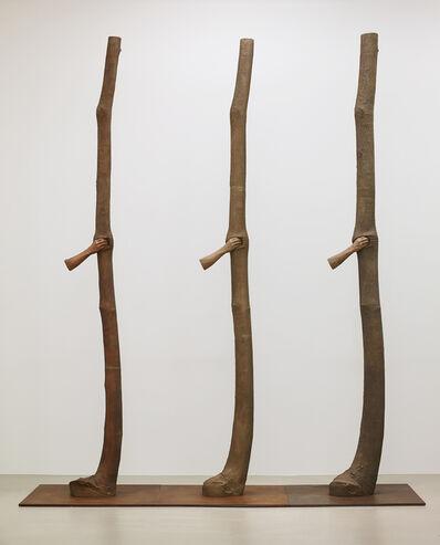 Giuseppe Penone, 'Trattenere 6, 8, 12 anni di crescita (Continuerà a crescere tranne che in quel punto)', 2004-2016
