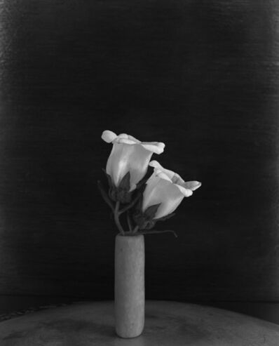 James Pitts, 'Two White Campanula in Tall Round Sculpey on Round Plate with Varnished Wood Background', 2020