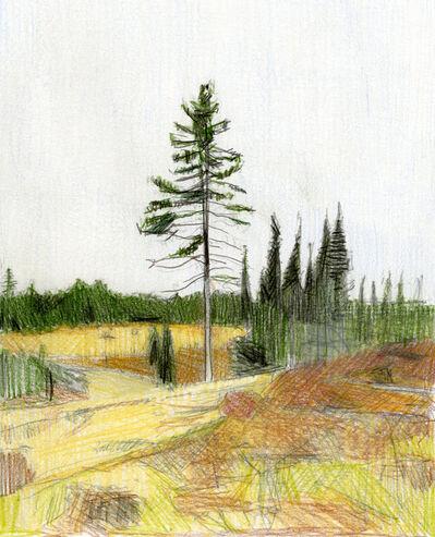 Jaron Childs, 'Treehaven', 2020