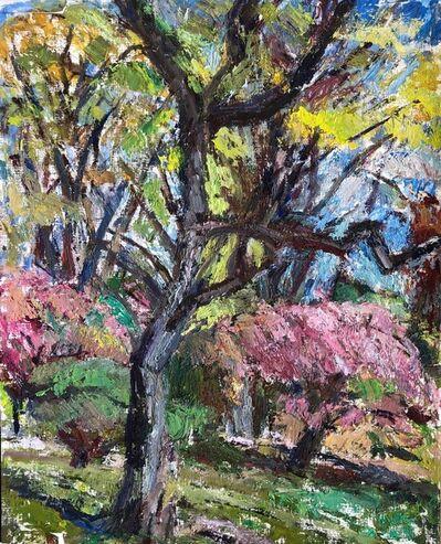 Gael Mooney, 'Spring Trees', 2020