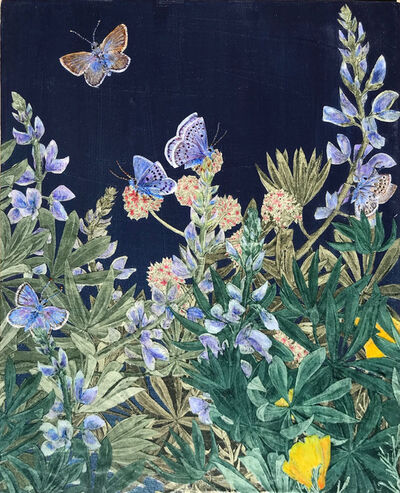 Julia Lucey, 'Mission Blue Butterflies', 2020